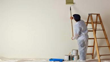 Thợ sơn nhà Hồ Gươm, Hồ Hoàn Kiếm chuyên nghiệp
